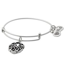 Alex & Ani - Path of Life IV