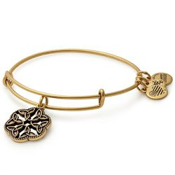 Alex & Ani - Endless Knot Charm Bangle