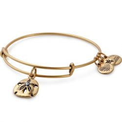 Alex & Ani - Sand Dollar Charm Bangle