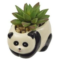 "Concepts in Time - Panda Ceramic Potted Faux Succulent - 4""x 5"""